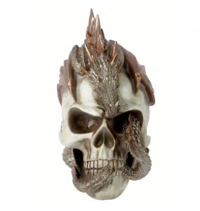 Resine 'Dragon Keeper's' Skull