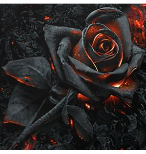 Square 'Burnt Rose' Cushion