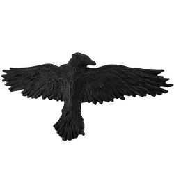 'Black Raven' Hair Slide