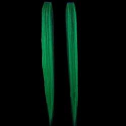Extensions de Cheveux Vertes